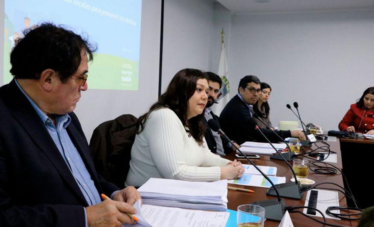 4° Consejo de Seguridad Comunal recibe asesoría en materia de apoyo familiar